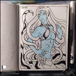 Sketchbook - Echidna