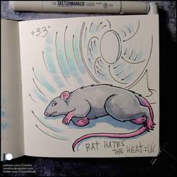 Sketchbook - Rat hates the heat