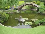 Pond view 26
