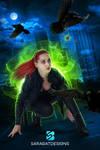 Raven Thief