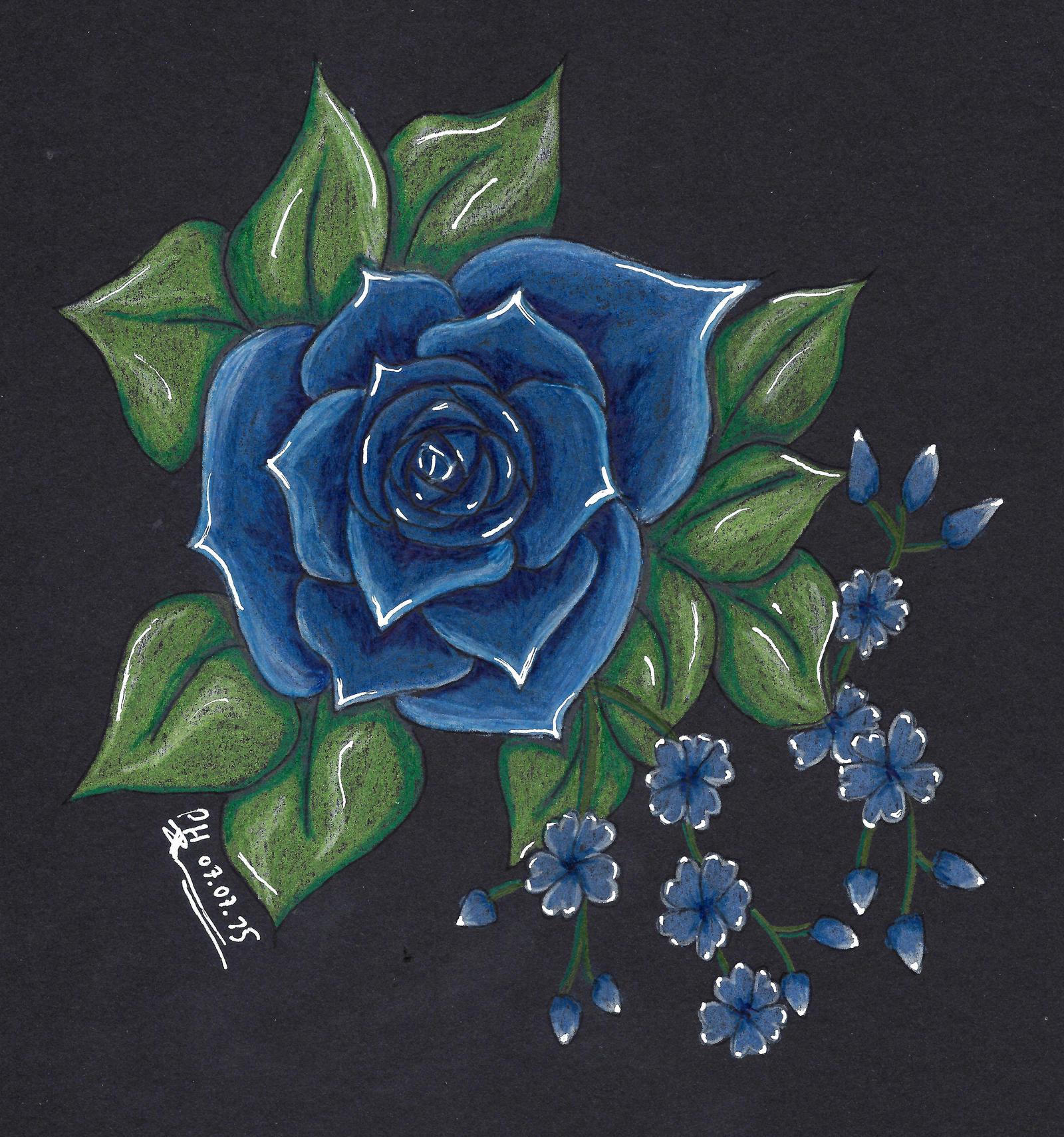 Blume by PanHaukatze