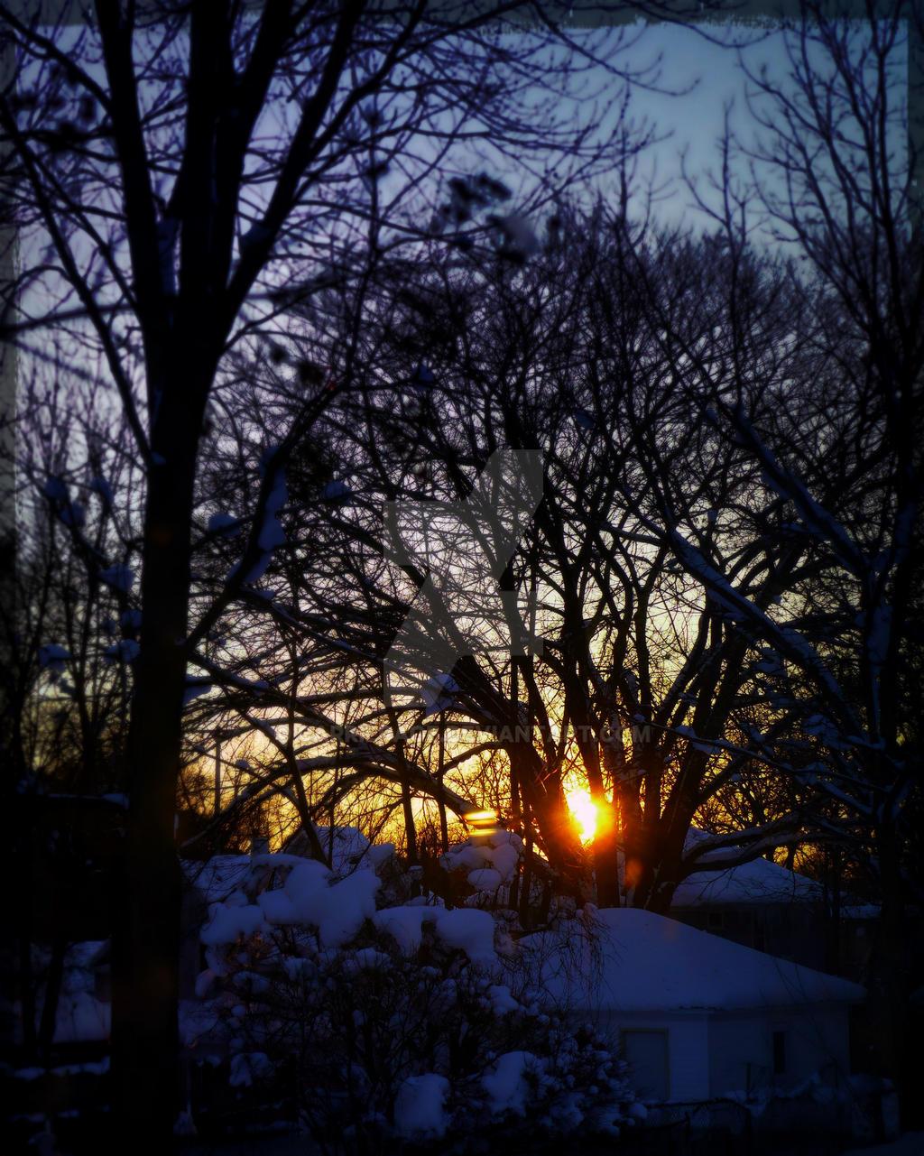 Snowfall Sunrise