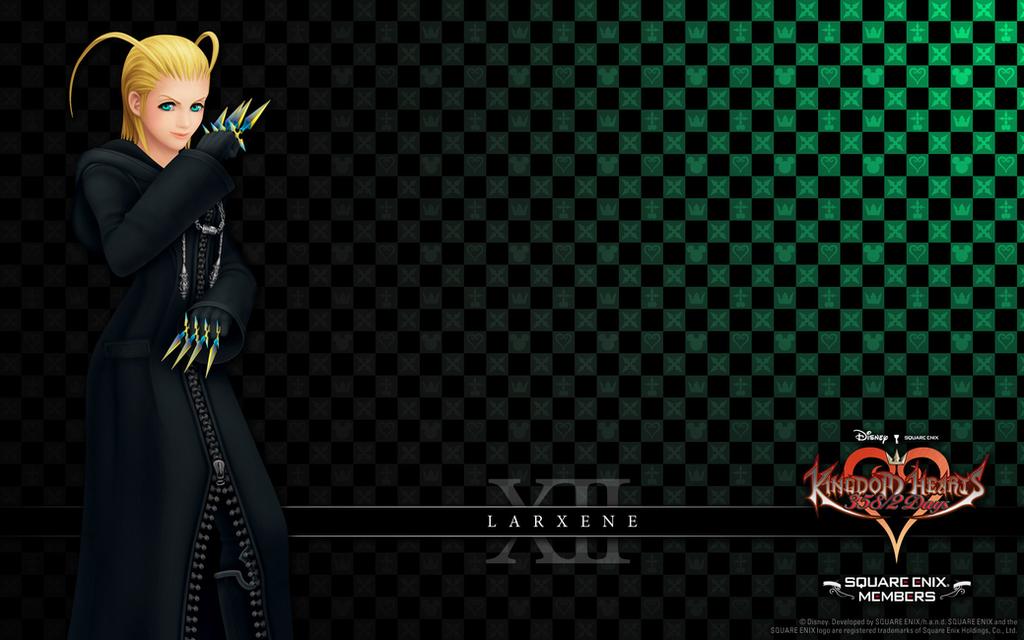 Kingdom Hearts 358-2 Days (Organization 13 - Membe by Darth-Drago