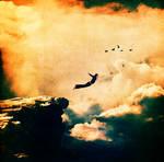 fly like the bird
