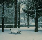 winter day II