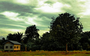 Rambai Tree by f2face