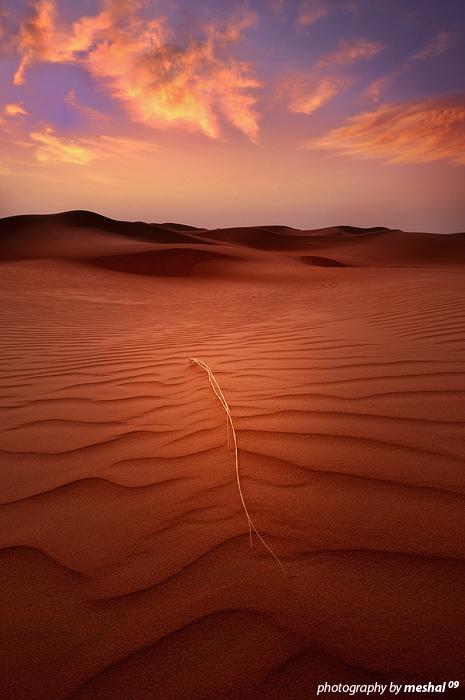 al-zylfe sand by imas200