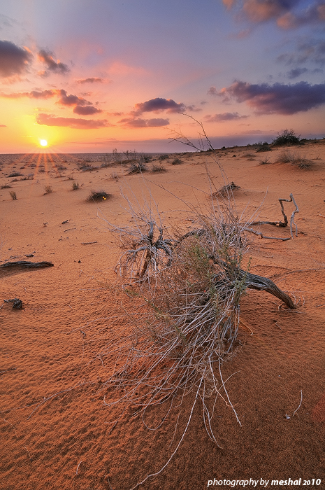 """""""big sand"""" area1 by imas200"""