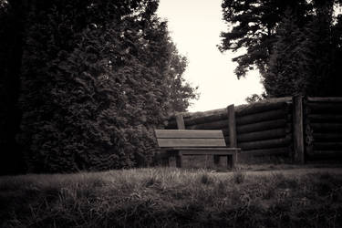 Lonely bench by CamillaSakar