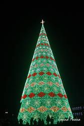 The Christmas Tree by Dark-Rose-Memories