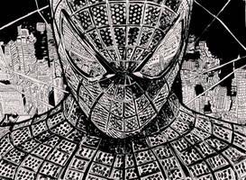 The amazing spiderman.. by ladyjart