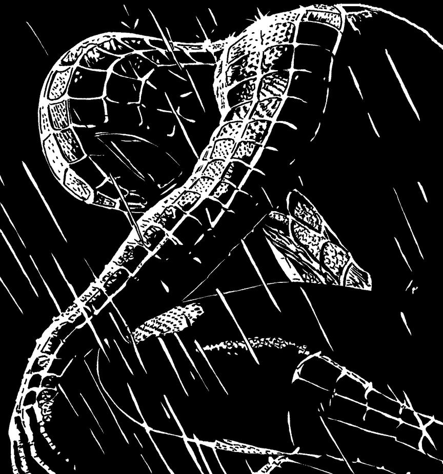 Spiderman by ladyjart on DeviantArt