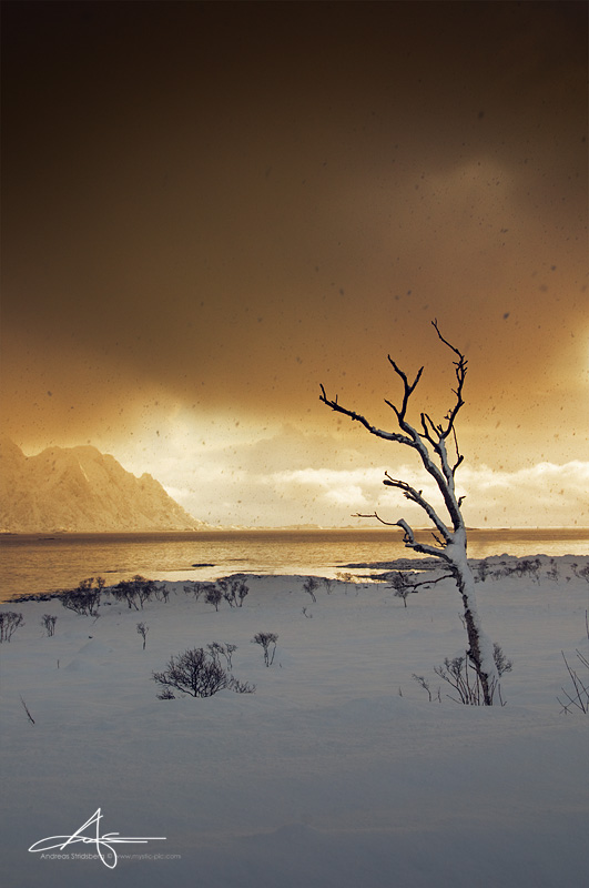 Lofoten Today - 4 by Stridsberg