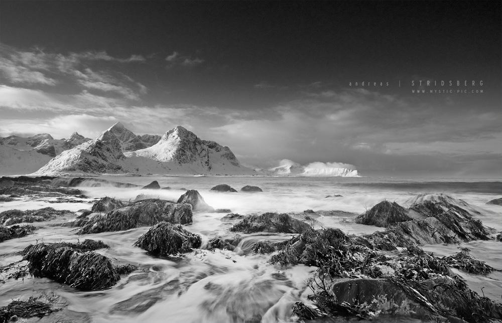 Monochrome by Stridsberg