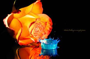 Blue Splash by Stridsberg