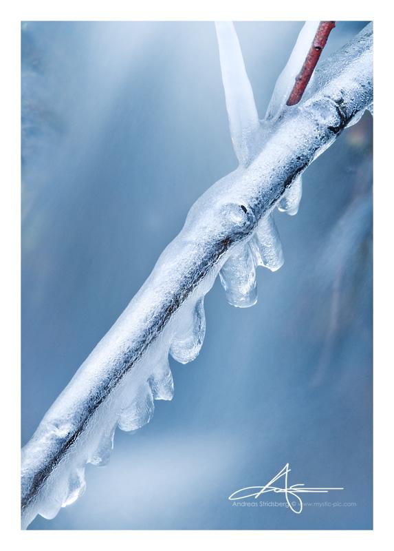 Frozen Stick by Stridsberg