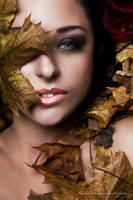 Autumn Leaves - Part II by Stridsberg