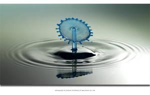Fan of Blue by Stridsberg