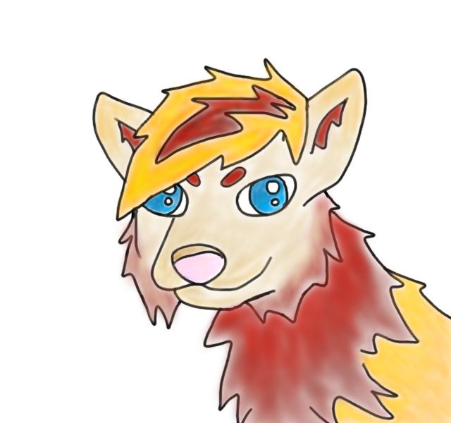 Wolf Head Colouring by kakashi-narutorules
