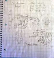 Kamangonox novus