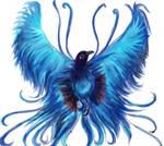 Bird of paradise-2