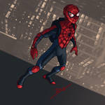 Spider-Man Reboot Costume
