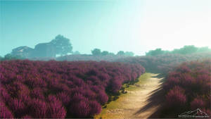 Provence by 3DLandscapeArtist