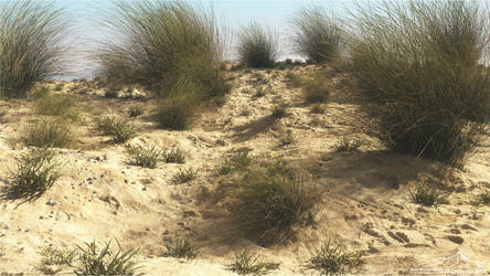 Dunes by 3DLandscapeArtist