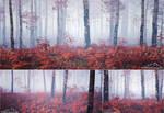 Triptych 3 - Autumn Walk