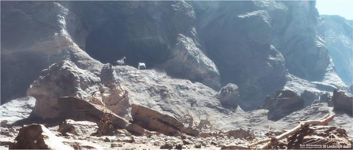 Desert Walk prt. 3 - Wild Horses