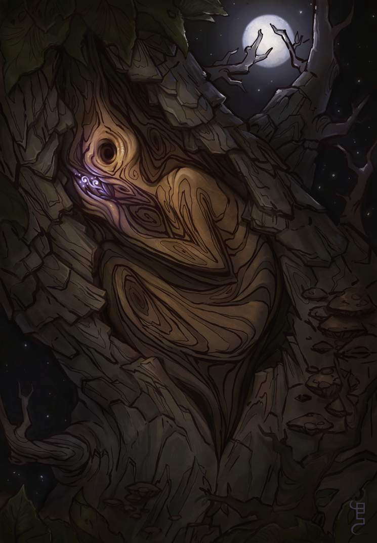 spiral and the tree by schuhoku