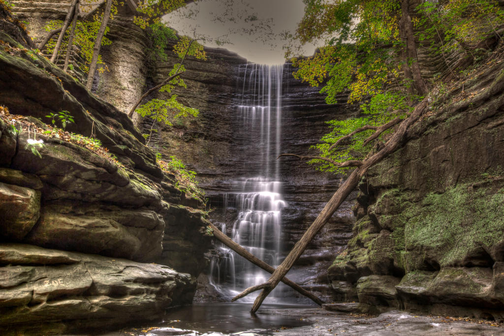 Illinois State Park by longhairboo
