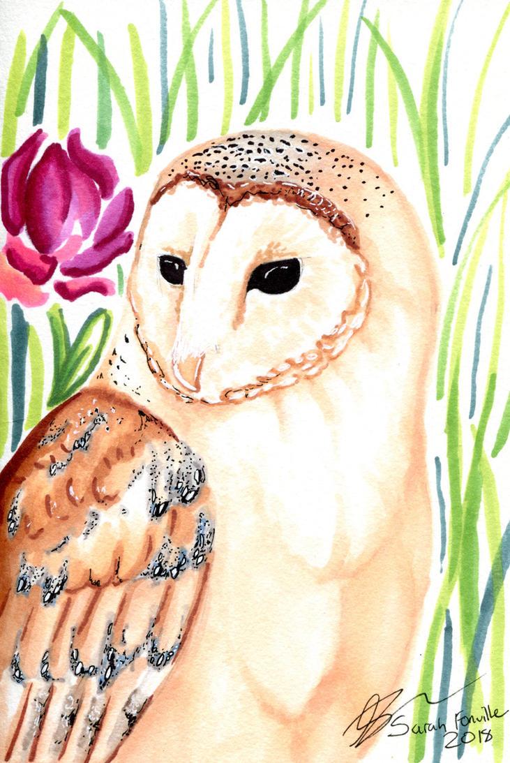 Barn Owl by ordinaryredtail