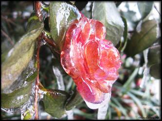 Frozen Heart by Scrat-Riker