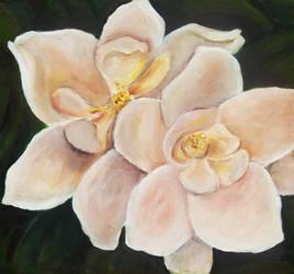 Magnolia Blossoms by Scrat-Riker