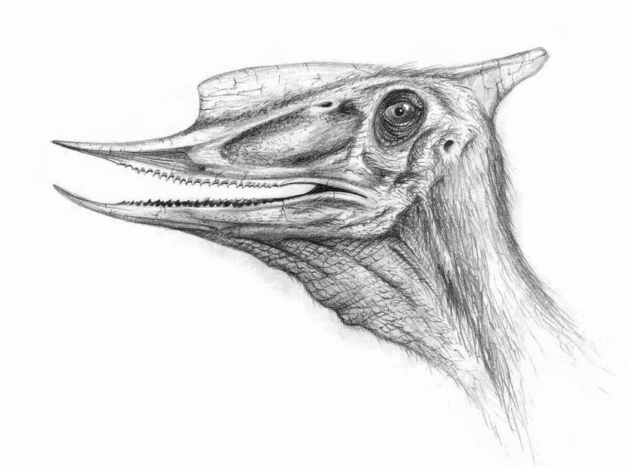 Dsungaripterus by Giric