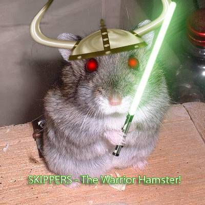 hamster culture SKIPPERS___The_Warrior_Hamster