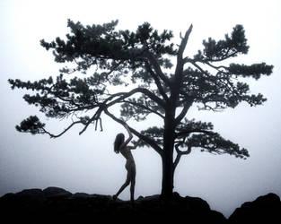 Dancing Cliffside by philneff
