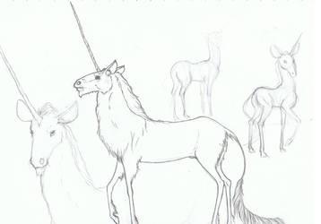 Unicornus Albus by Luniers