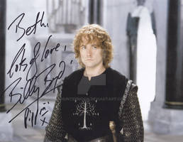 Pippin of the Lord of the Rings