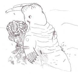 Predator versus Walrus