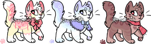3 adopts CLOSED by Kitzophrenic