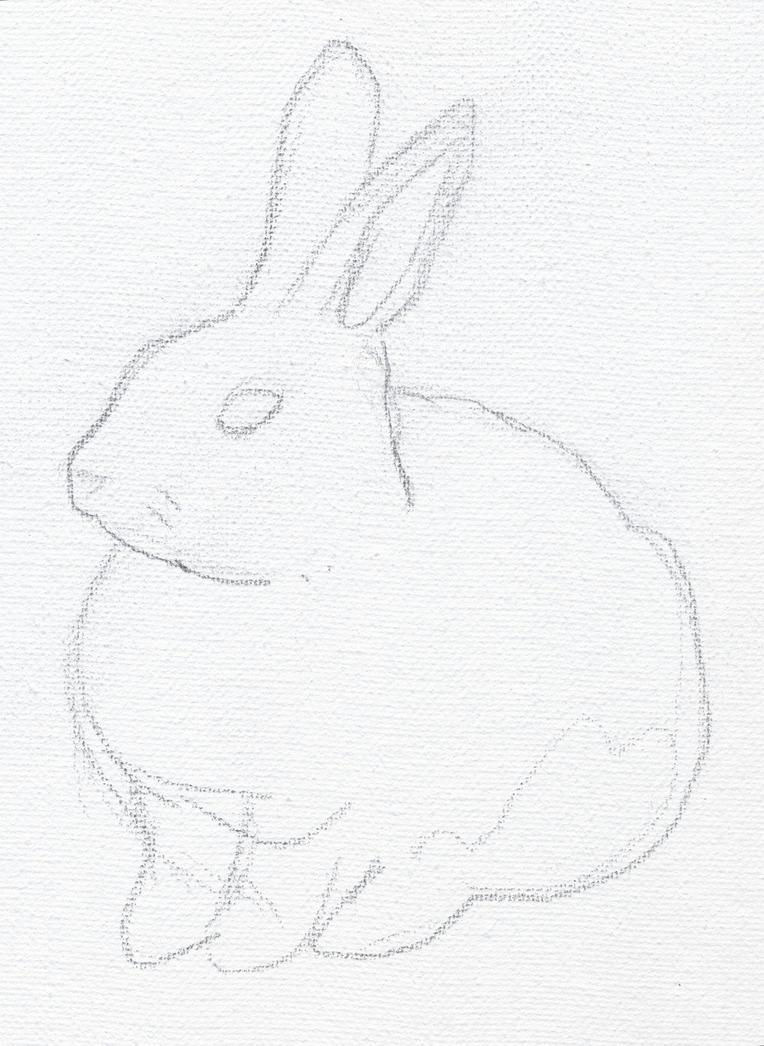 clover the rabbit pencil sketch by stevenmatarazzo on deviantart