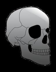 Skullytone1