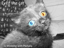 Cats See Portals by QuEeNoFpAnCaKeS