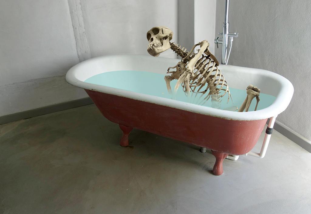 Superior Skeleton In A Bathtub By Derkert ...