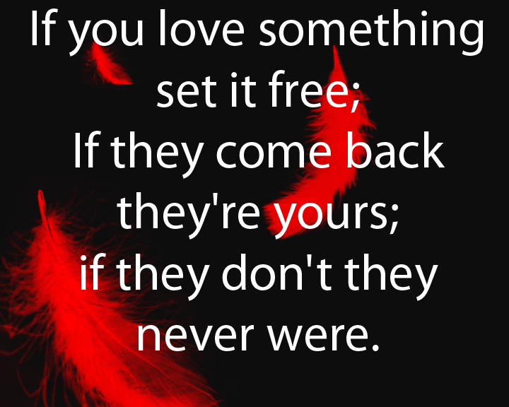Set It Free Quote: If You Love It Set If Free By The-Quote On DeviantArt