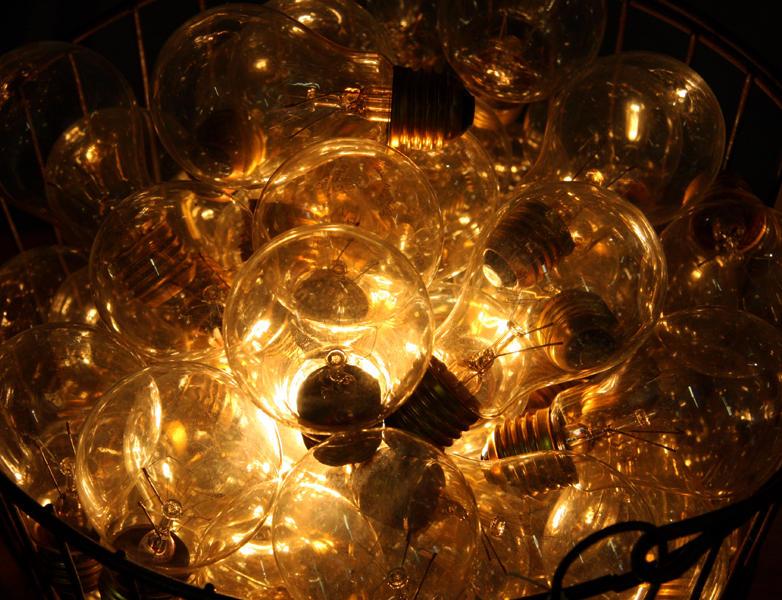Bucket Of Bulbs