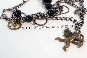 Sign of the Raven by suprgrl1995
