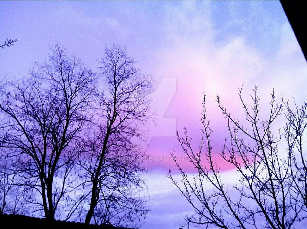 Violet sky by Chiara33